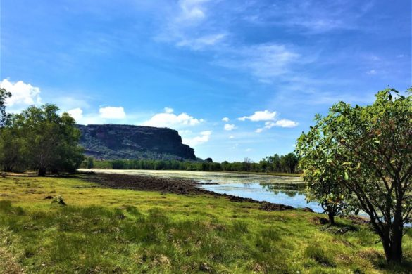 Schoenste Nationalparks in Australien - Kakadu National Park