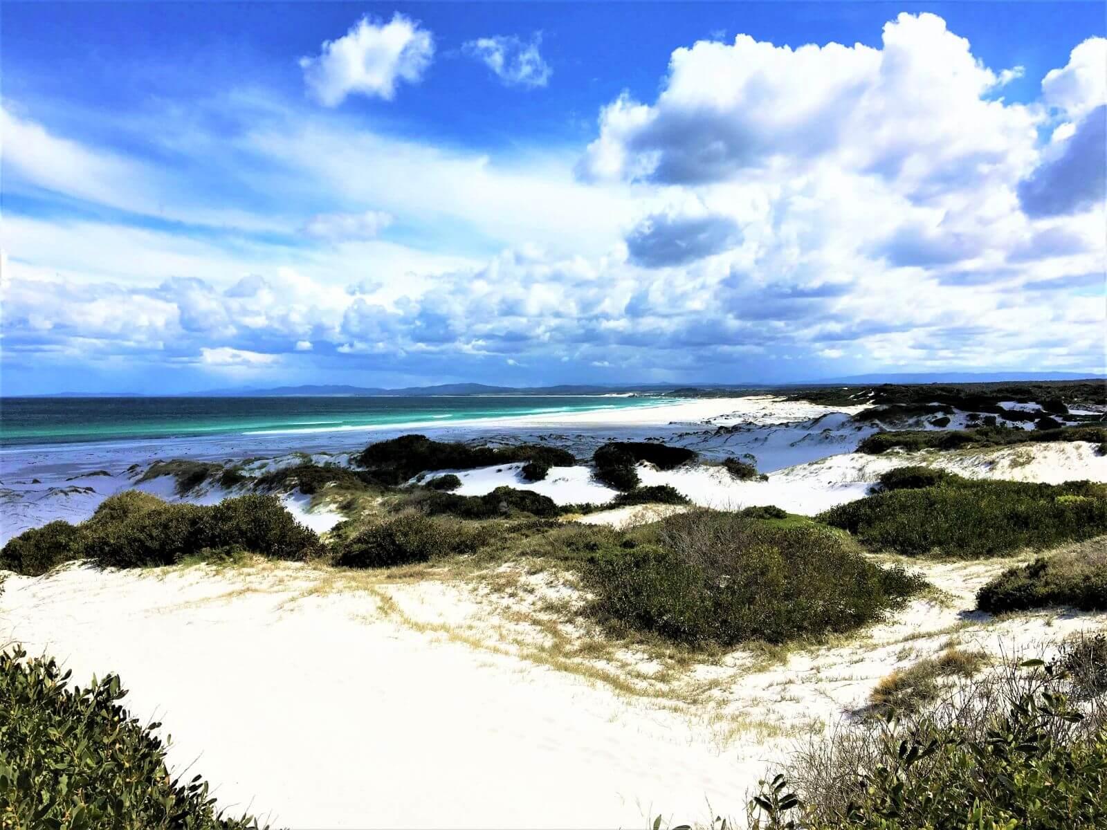 Tasmanien - Schönste Strände - Bay of Fires Beach