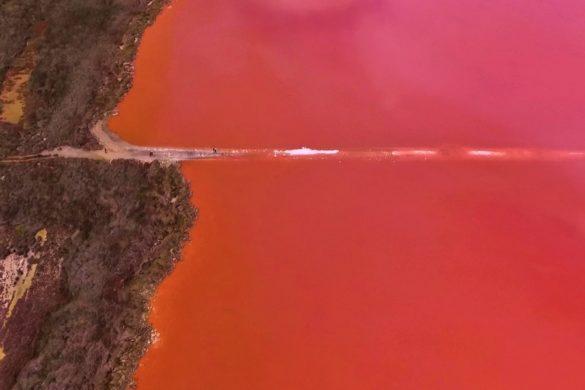 Hutt Lagoon - Pinker See an der Westküste von Australien
