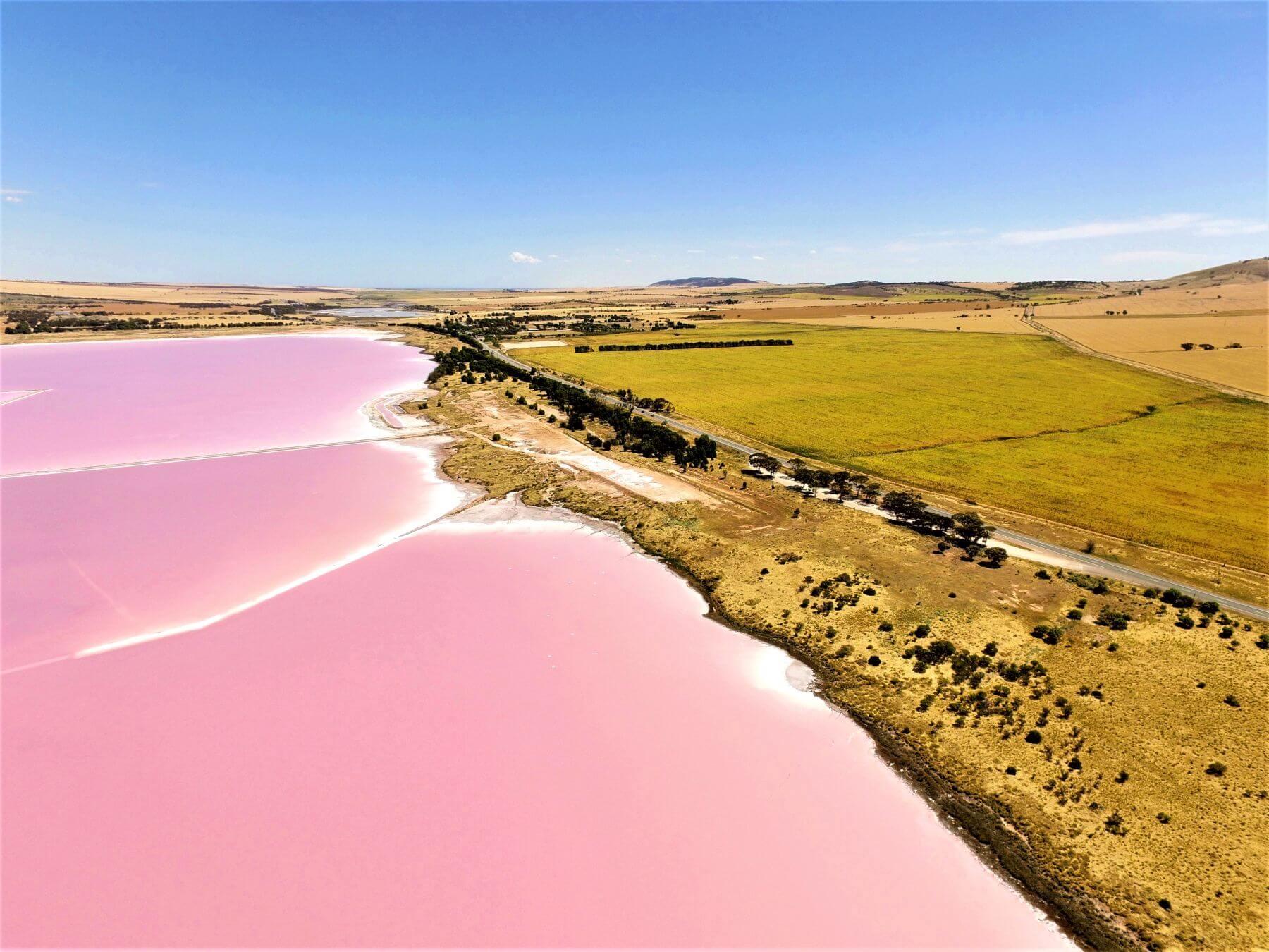 Rosa See in Australien - Der Lake Bumbunga