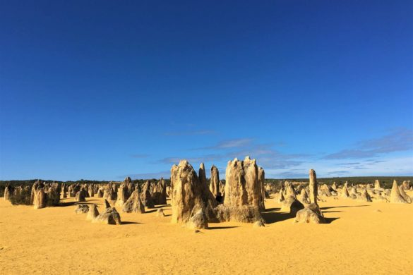 Nambung National Park - Pinnacles-Wüste
