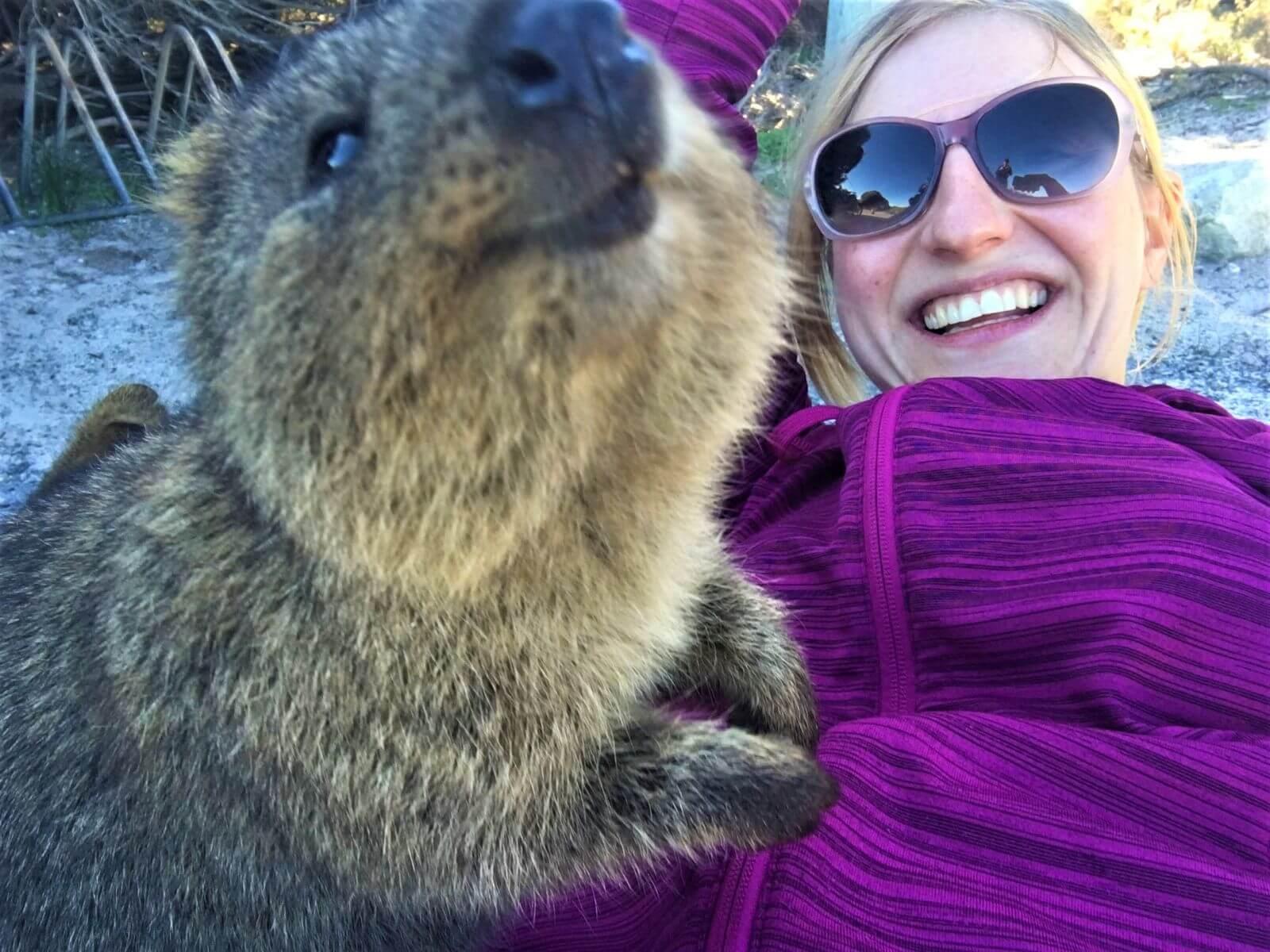 Selfie mit einem Quokka auf Rottnest Island