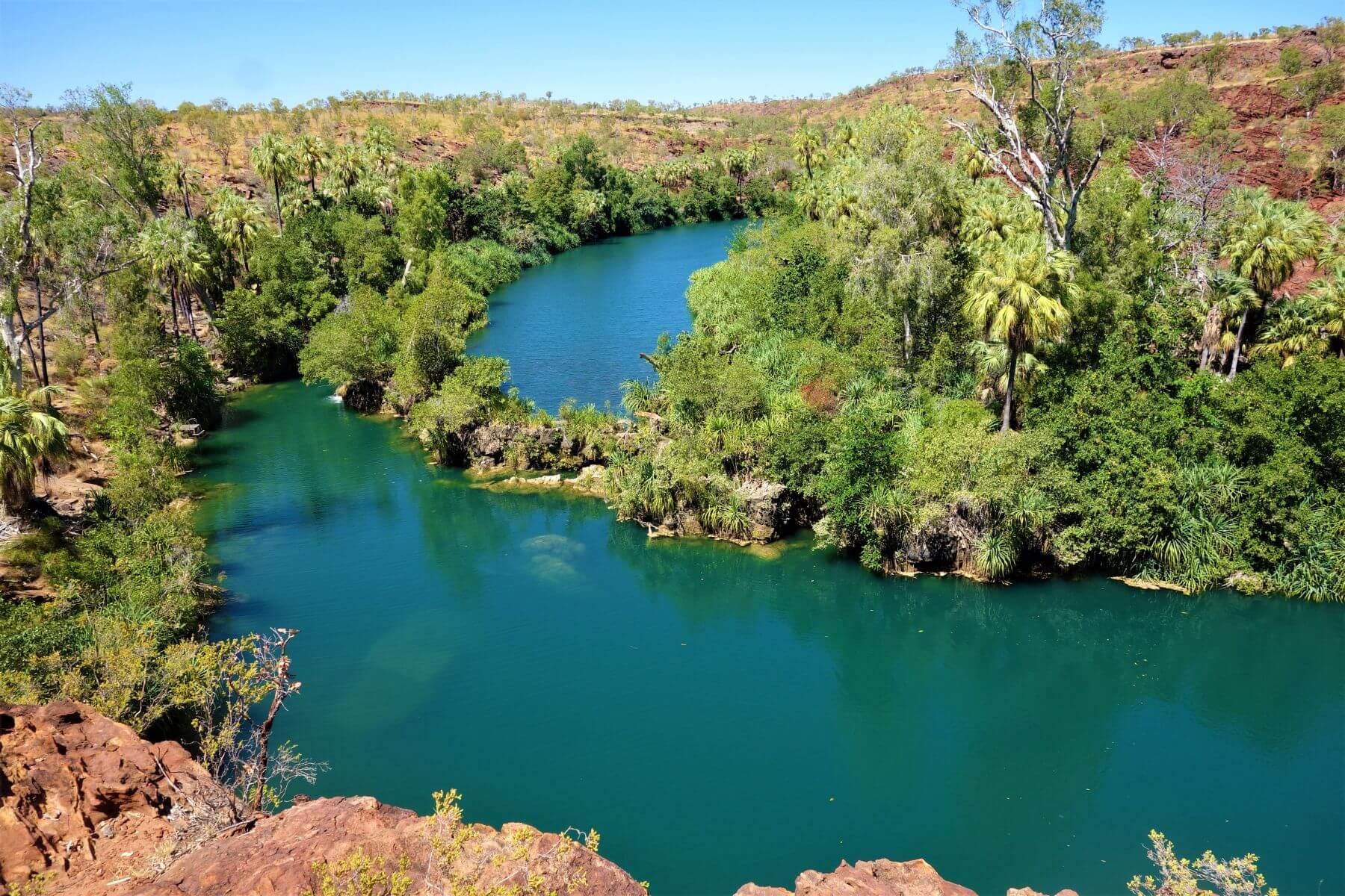 Türkisblauer Fluss Lawn Hill - Top Sehenswürdigkeit in Queensland