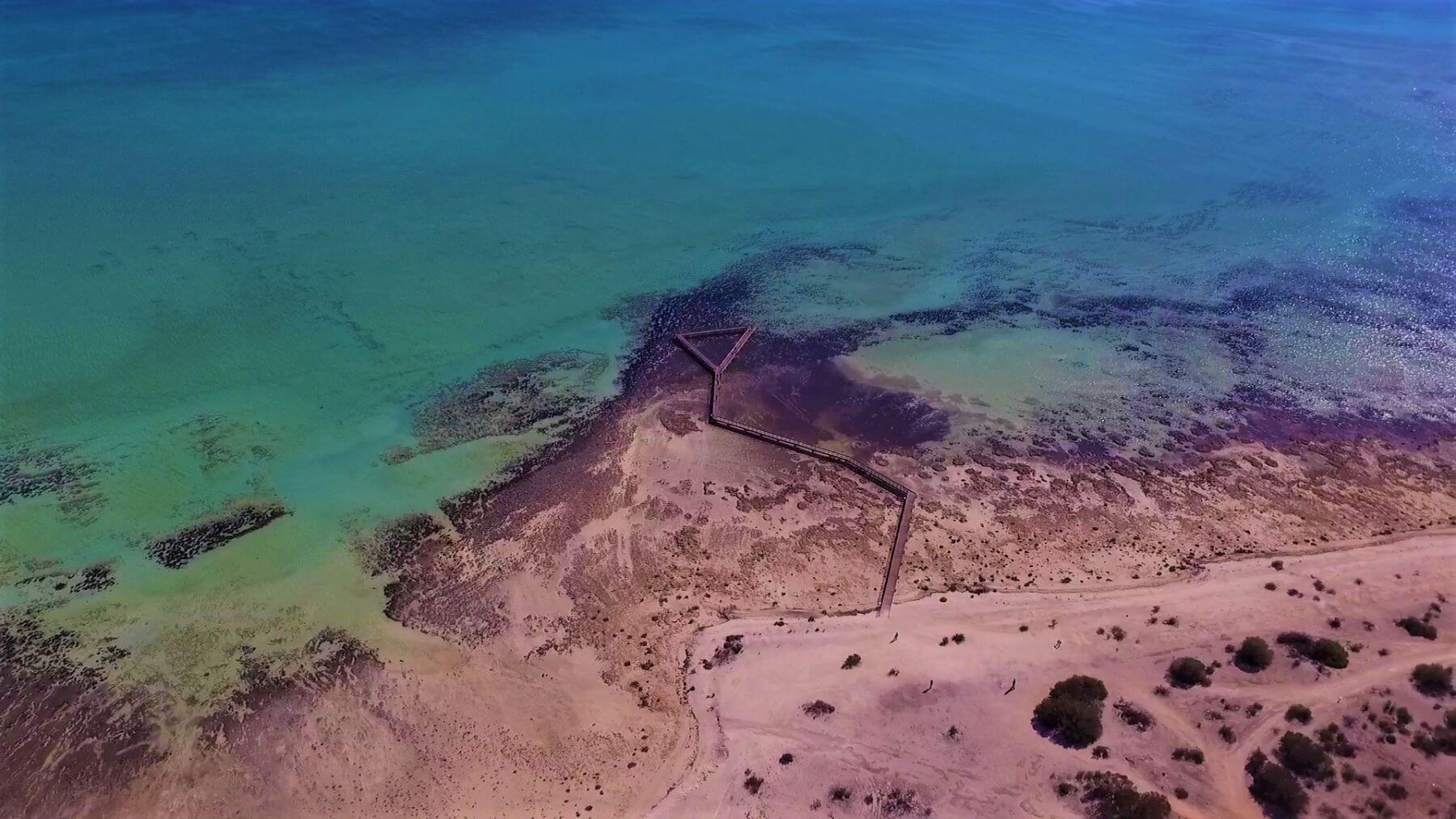 Shark Bay Sehenswürdigkeiten - Hamelin Pool