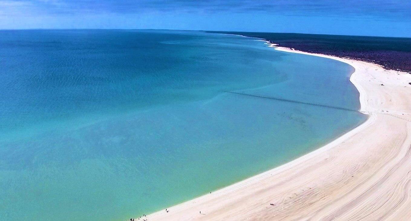 Shark Bay in Australien - Shell Beach