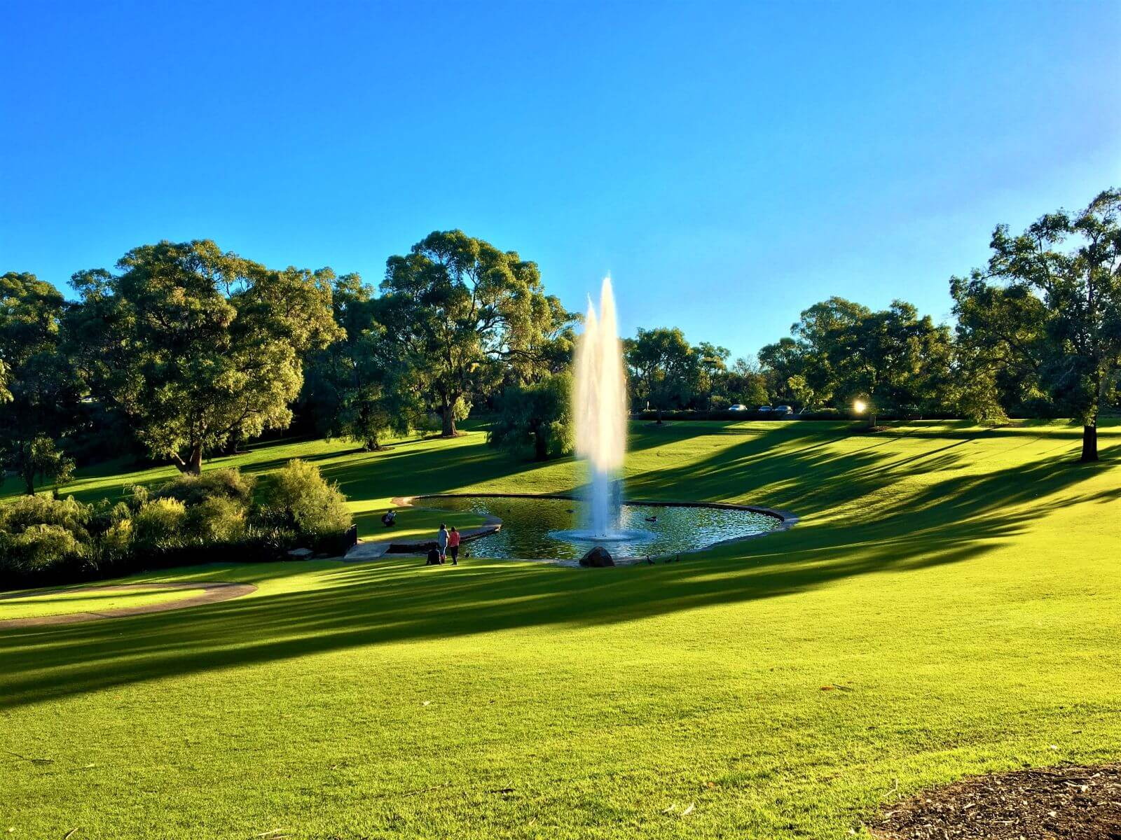 Sehenswürdigkeiten in Perth - Kings Park