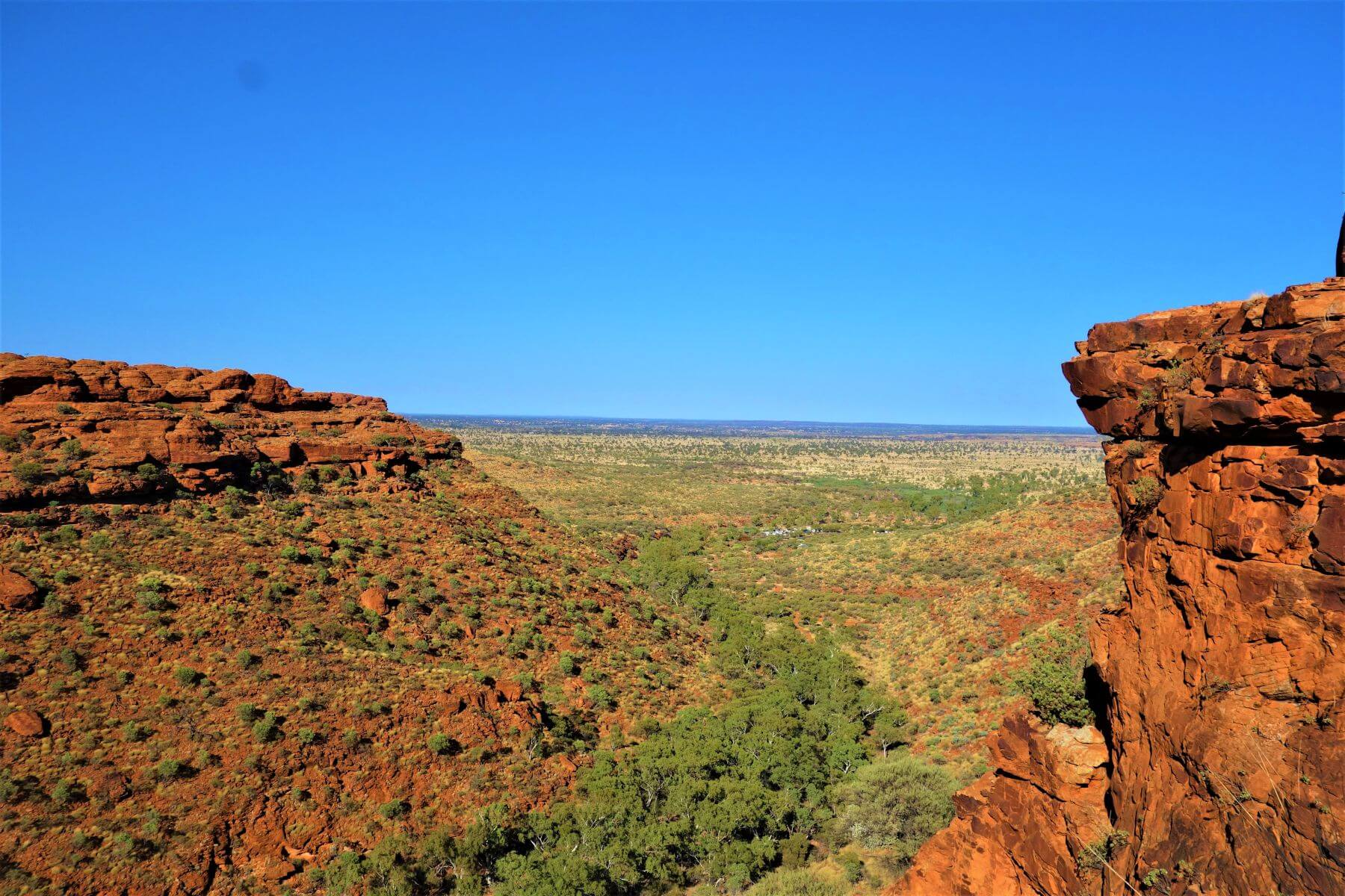 Ausblick vom Kings Canyon in Australien