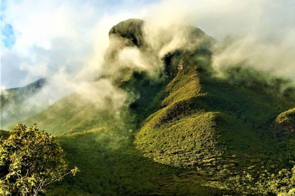 Bluff Knoll im Stirling Range Nationalpark
