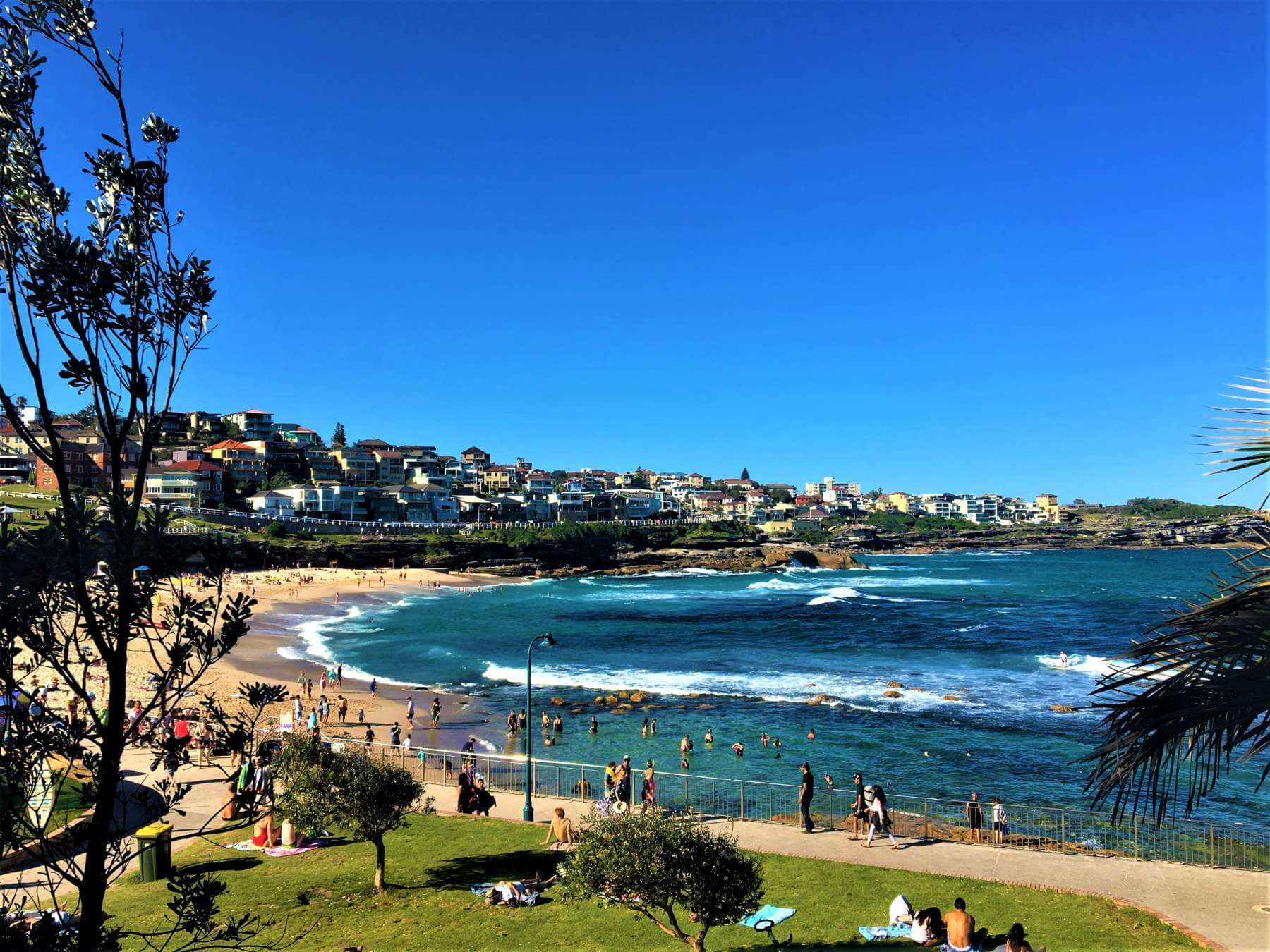 Blick auf den Bronte Beach - Sydney in Australien