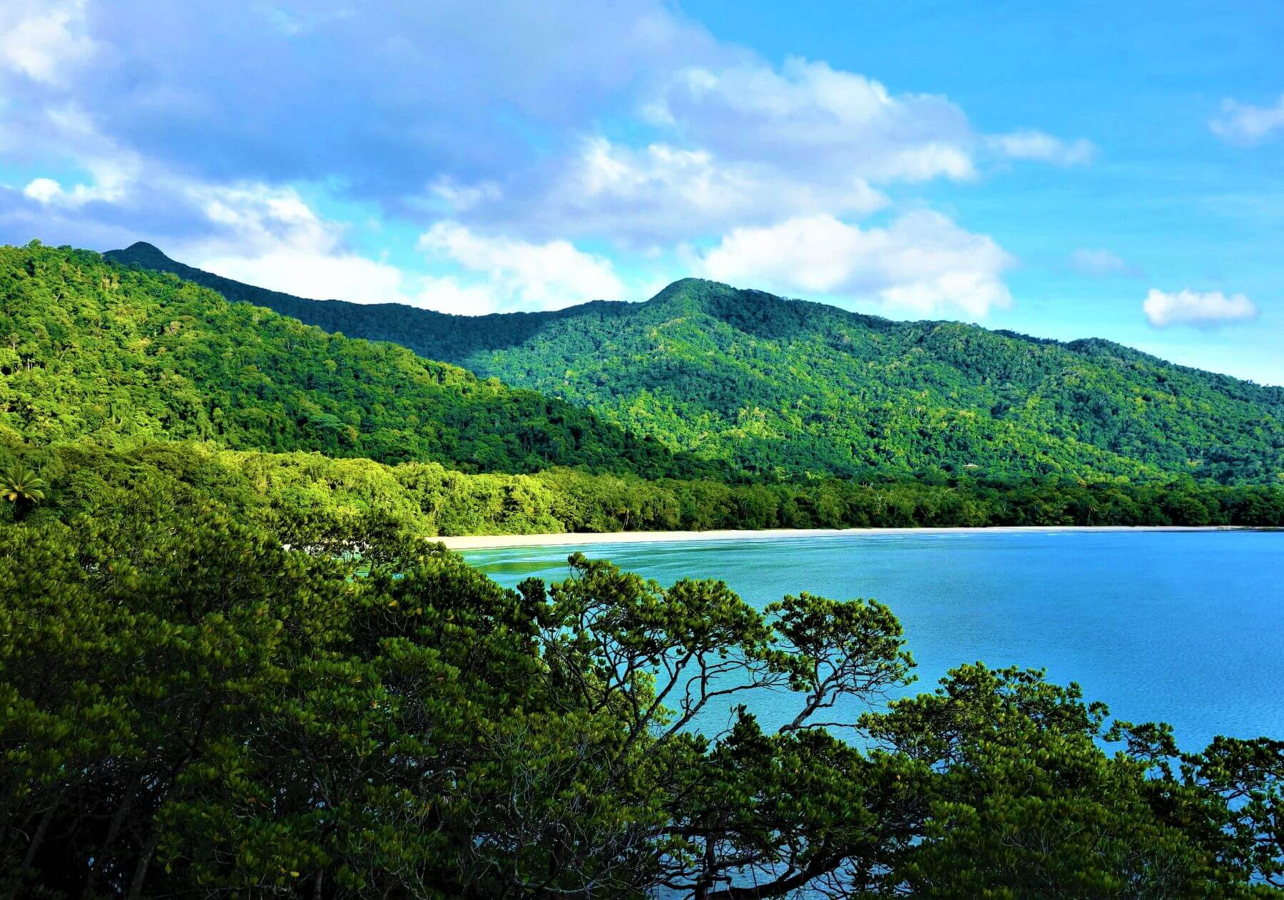 Cape Tribulation im Daintree National Park