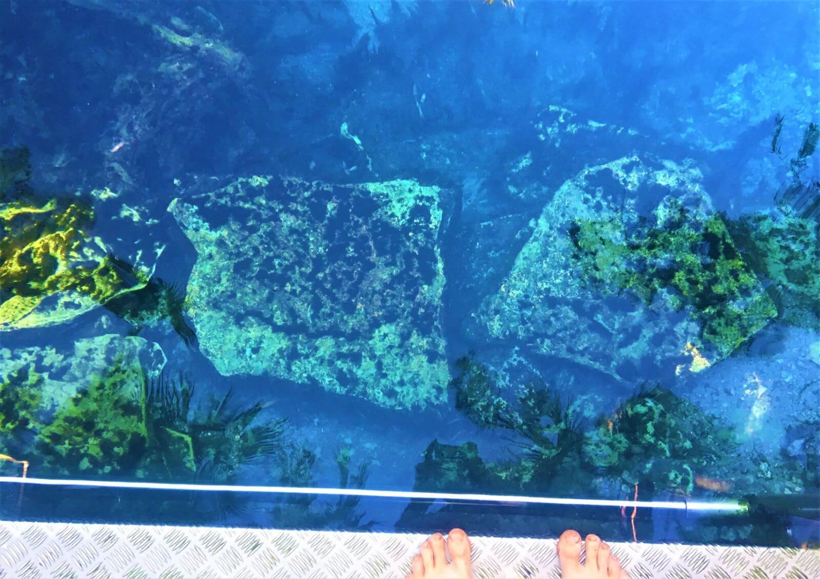 Kristallklares Wasser der Bitter Springs im Elsey National Park