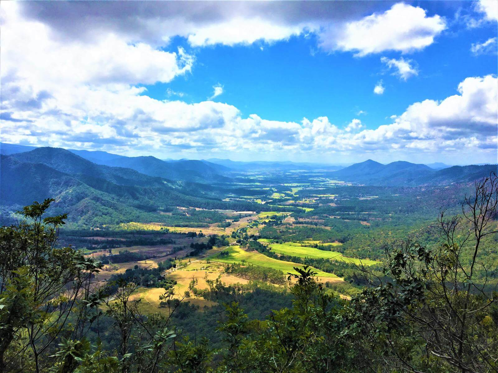 Blick auf den Eungella National Park in Queensland
