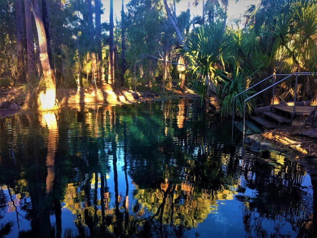 Bitter Springs Thermalquellen in Mataranka - Australien