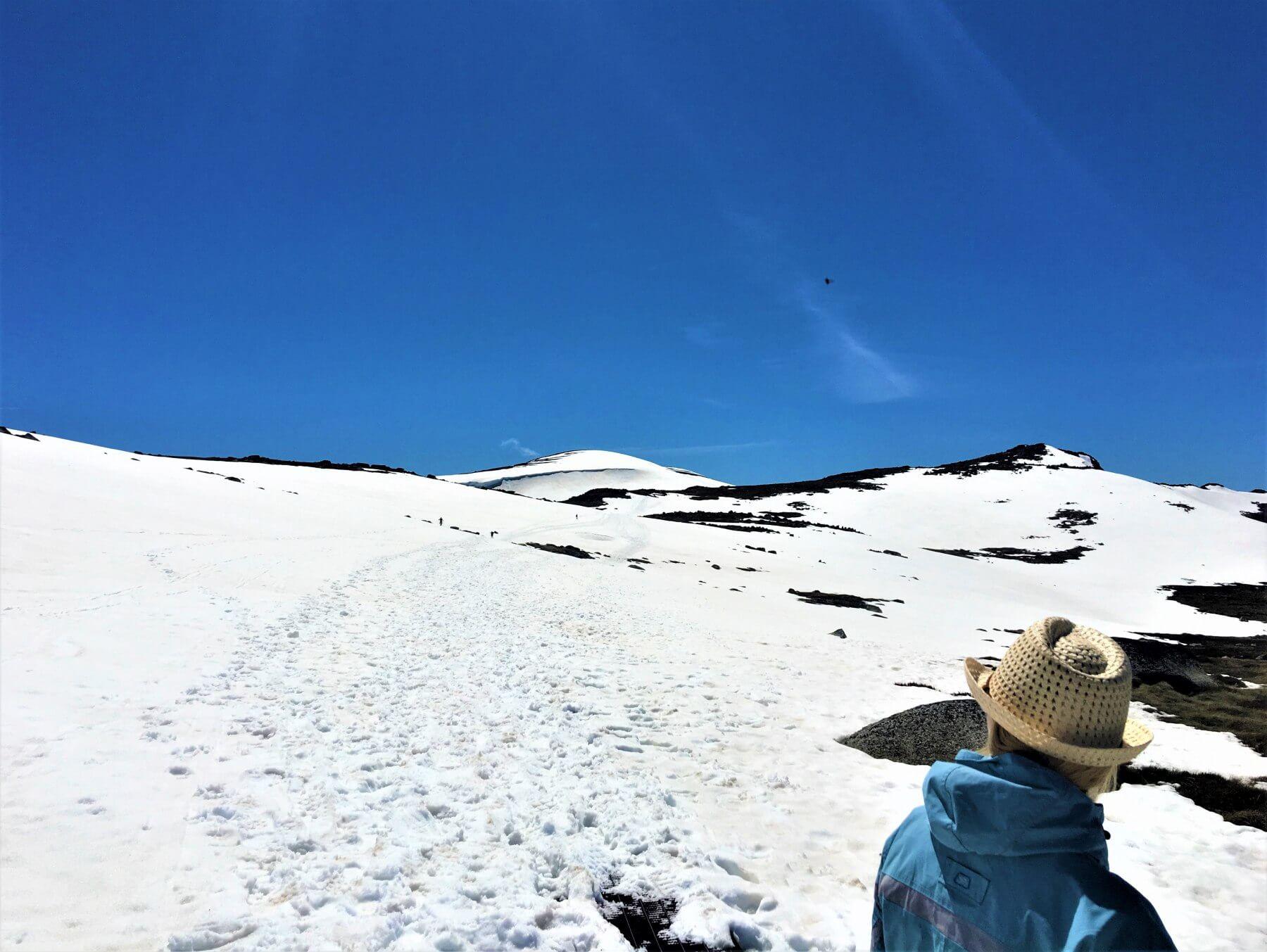 Mount Kosciuszko National Park