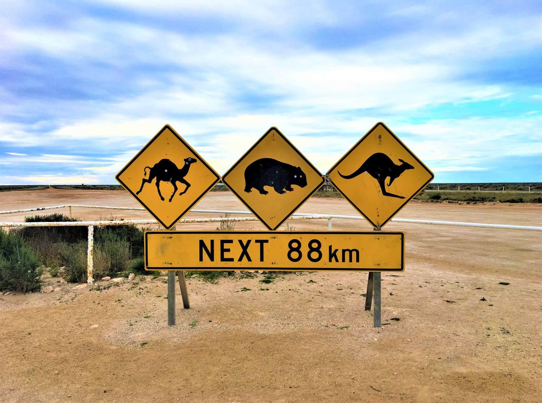 Nullarbor Ebene - Australien