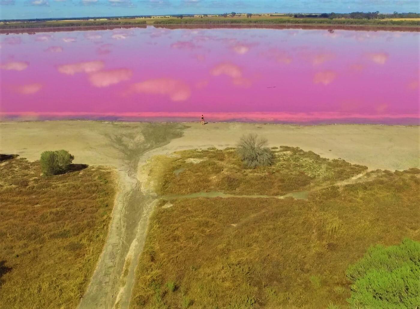 Pink Lake bei Australien