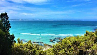 Blick auf das Cape Bridgewater - Sehenswürdigkeiten in Australien