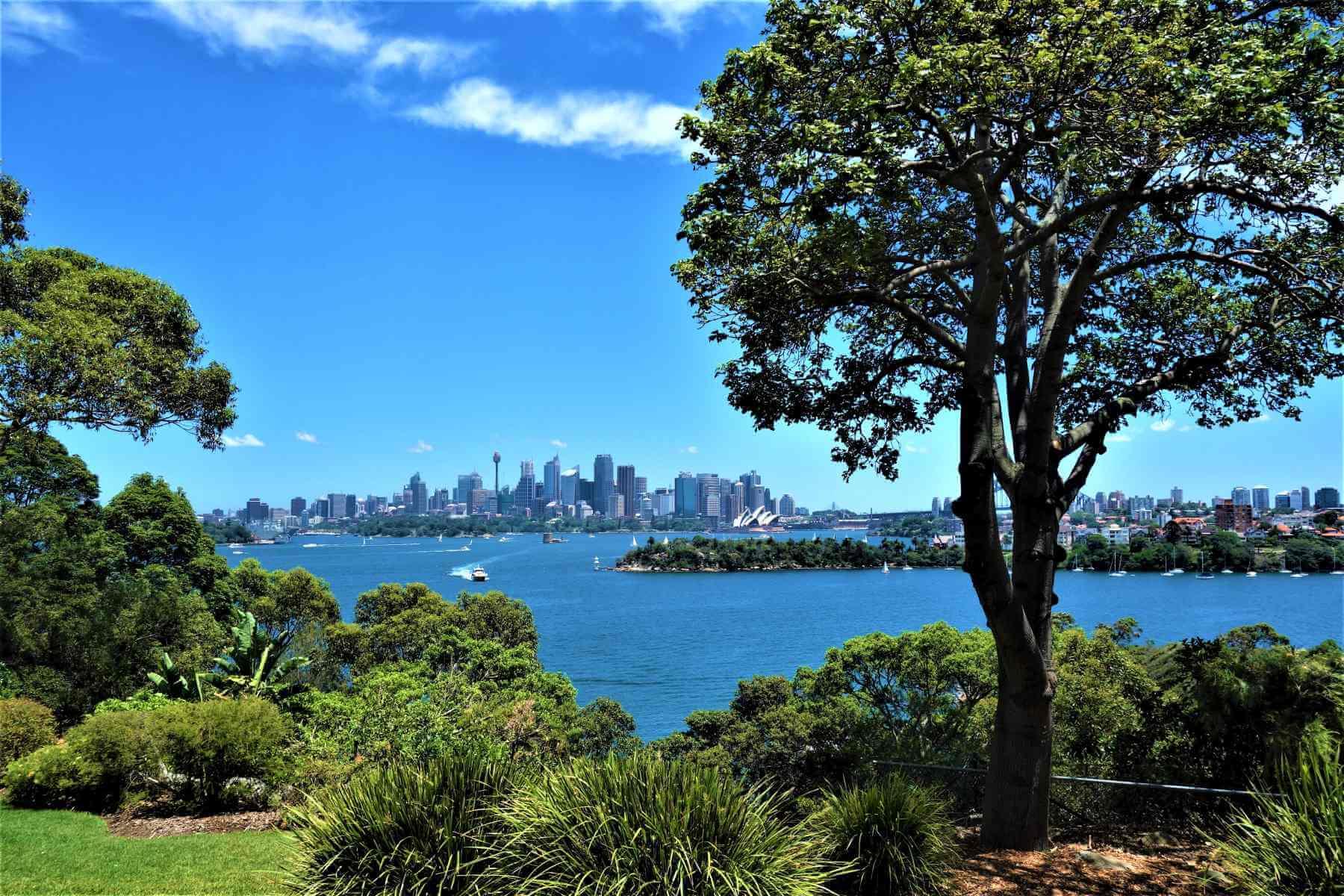 Blick auf Sydney in Australien
