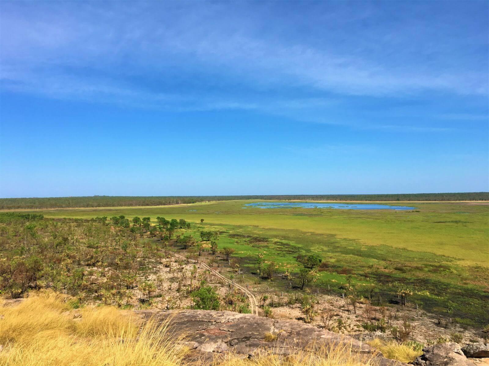 Blick vom Ubirr Rock auf die grünen Weiten von Nordaustralien