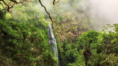 Wasserfall im Lamington National Park