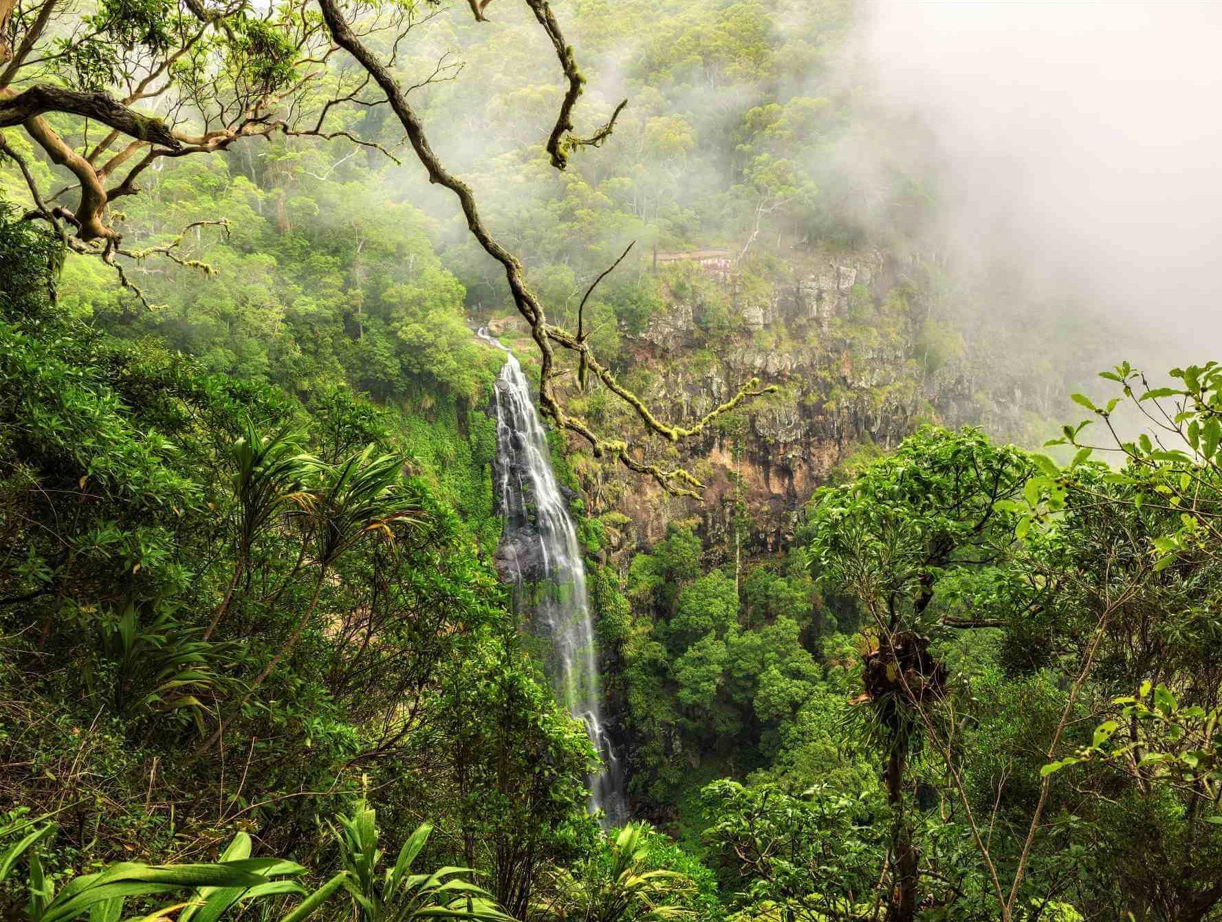 Wasserfall im Lamington National Park