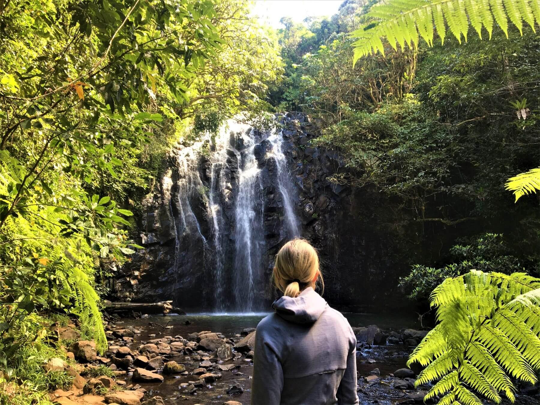 Wasserfälle in Australien - Ellinjaa Falls