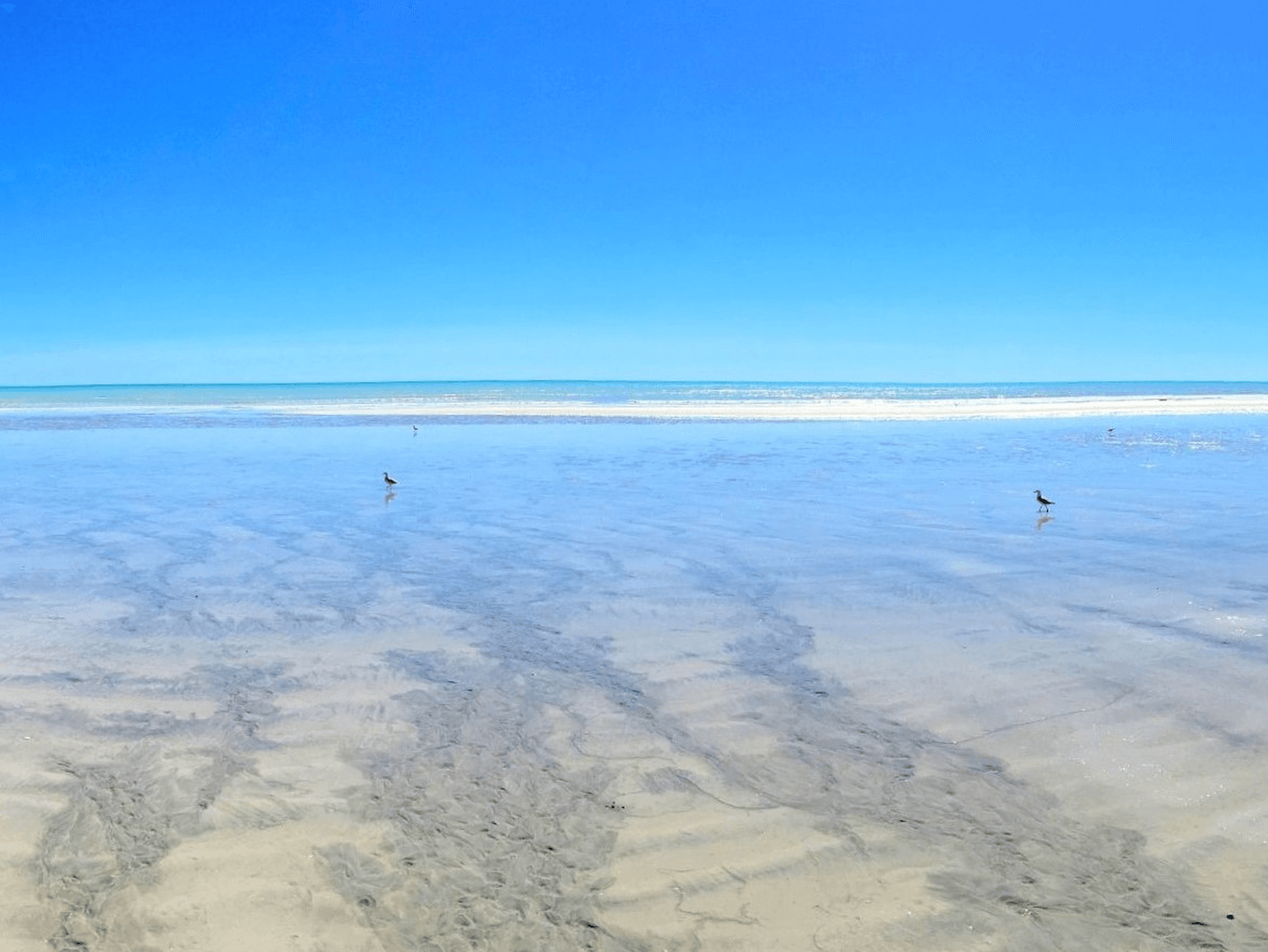 Highlights - Route Perth nach Broome
