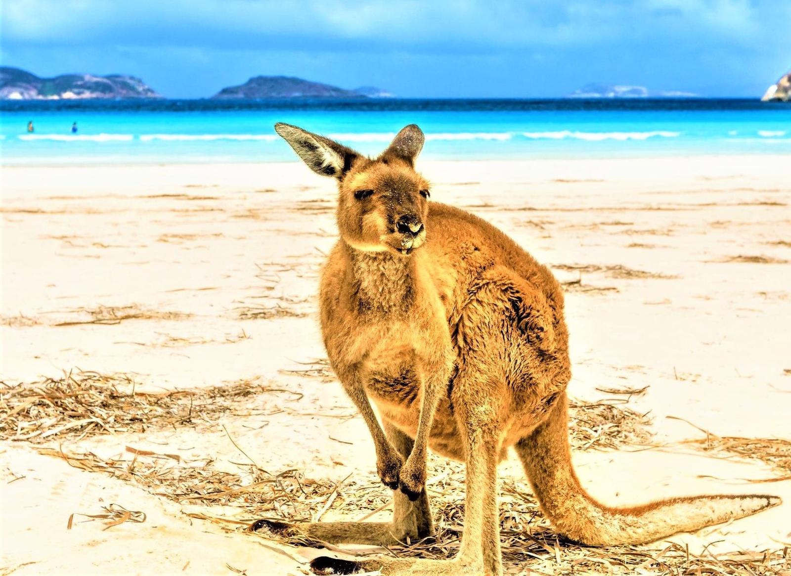 Sehenswürdigkeiten - Australien