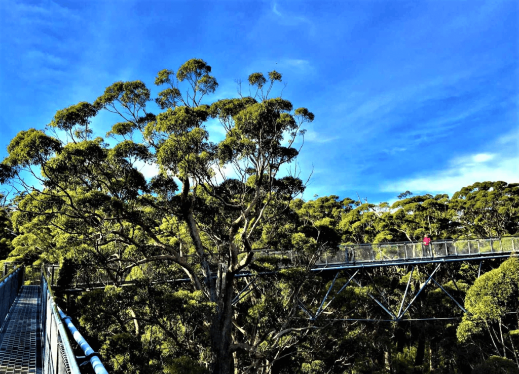 Sightseeing - Süden Australien